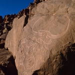 Oued Afar, Algeria. Oblique view of engravings of spirals superimposing bubalus. Image ID: algtod0040003