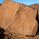 Atlas Mountains, Morocco. Two panels of Tazina style engravings on large sandstone boulder. Left, outline rhinoceros facing left below horizontal line. Numerous vertical grooves, lightly engraved grooves and scratch marks.  Image ID: moratm0060004