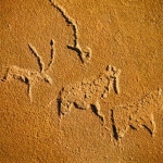 bas relief engravings of various antelope