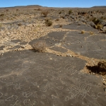 Aar Farm, Namibia. Glaciated sandstone pavement decorated with numerous geometric designs that include ovals, divided ovals, circles joined by lines, circles with rays, circles containing crosses, crossed lines, curved lines and more complicated shapes. Image ID: namsna0010001