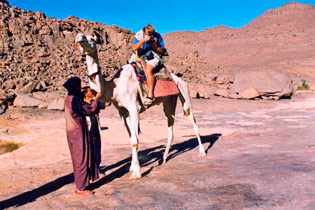 David Coulson sitting on a camel photographing hippo engravings on flat rocks in Algeria.