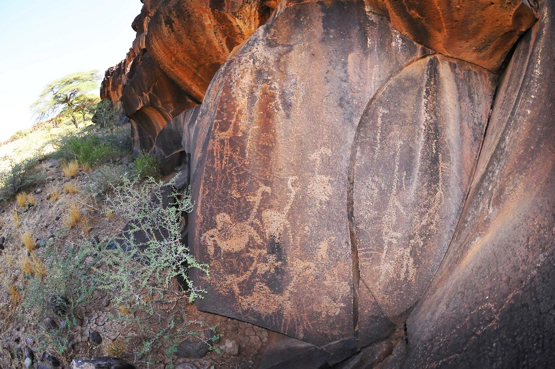 Camels in African rock art
