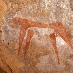 Archei Guelta. Sandstone cave wall. Bichrome painting of cow facing left. Note white udder and teats, and split hooves. Image ID: chaarg0020021