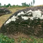 Borossa, Ethiopia.. Oblique view of engravings. Image ID: ethsod0060019