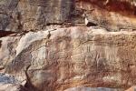 Messak Plateau, Libya, LIBMES0180032