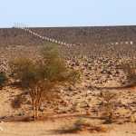 Messak. Ugly concrete & iron fence marking perimeter of main Wadi Mathendous rock art site. Image ID: libmes0170003