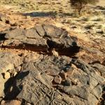 Messak Plateau, Libya, LIBMES0090036