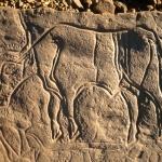 Messak Plateau, Libya, LIBMES0090055