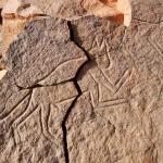 Messak Plateau, Libya, LIBMES0170061