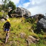 Nsama wa ng'ombi, Malawi, malnsa0010004