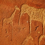 Detail of the many animal engraved panel at Twyfelfontein