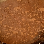 Important panel of animal engravings which include rhino, elephant, giraffe and zebra as well as human and animal footprints/tracks. These engravings are probably at least 2,000 years old and are believed to have been made by Bushman/San hunter gatherers. Image ID: namdmt0010004