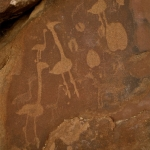Ostrich engravings accompanied by other animal tracks