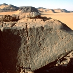 Djaba, Niger. On boulder lying on inselberg summit, two outline engravings of white rhinoceros facing right. Scale bar. Image ID: nigdjd0060006