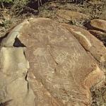 Vandalised rock engravings of animals possibly elephant, SOASTR0010006