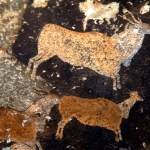 Drakensberg, South Africa.Polychrome shaded eland walking right. Image ID: soadrb0010007