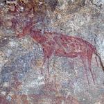 Red antelope. Image ID: tankon0030003