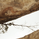 Painting of a fish appearring to emerge from the rock. Mashonaland, Zimbabwe. Image ID: zimmsl0030002